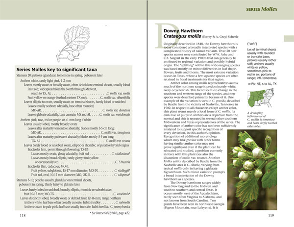 Haws - A Guide to Hawthorns of the Southeastern United States by Ron Lance