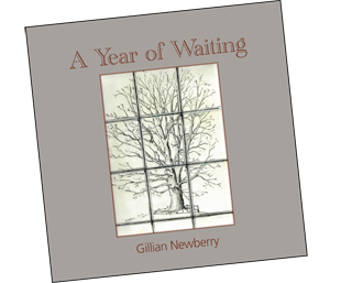 A Year of Waiting by Gill Newberry