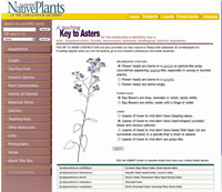 screenshot of Aster Key