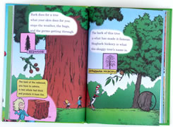 page from I Can Name 50 Trees Today! by Bonnie Worth